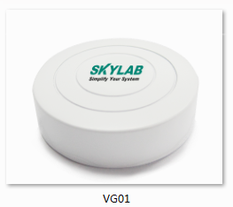 SKYLAB Beacon VG01